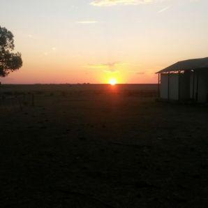 Sunset on the farm - priceless