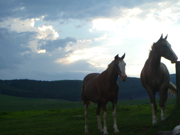 Midlands, KZN, South-Africa, loved the countryside