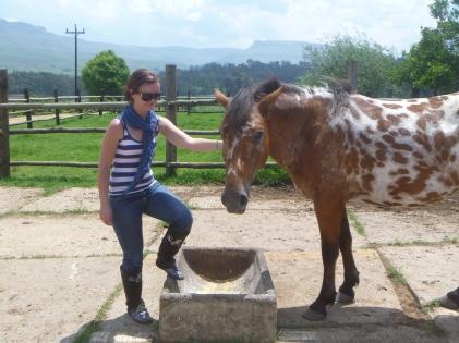 my favorite animal, went horseriding